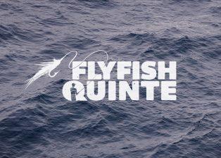 FFQ_logo_thumb